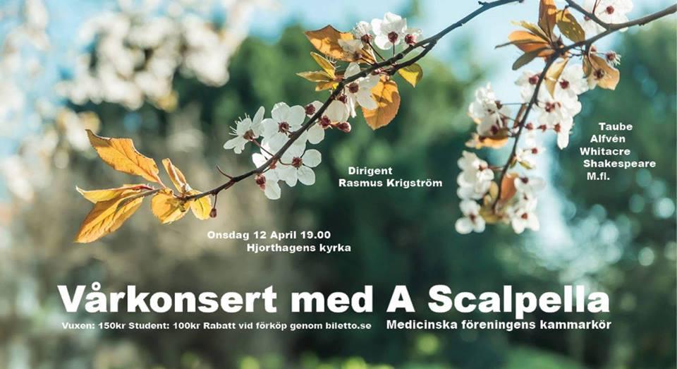 A Scalpella Vårkonsert affisch
